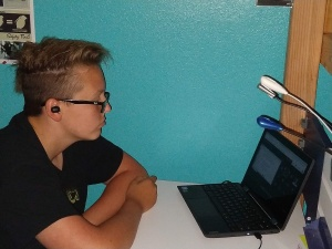 Student virtual learning at laptop.